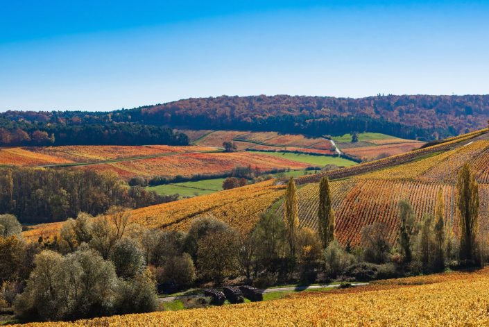 photographe paysages baroville