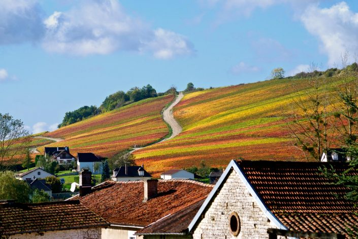 paysage automne champagne