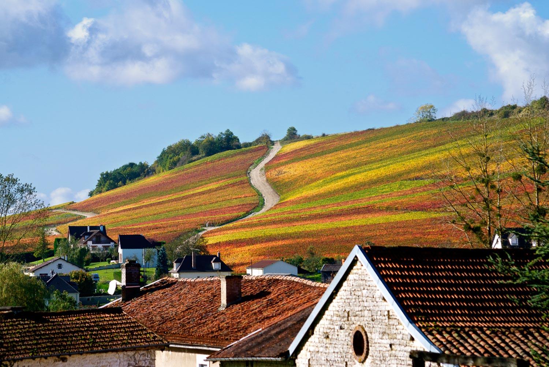 photographe paysage aube champagne