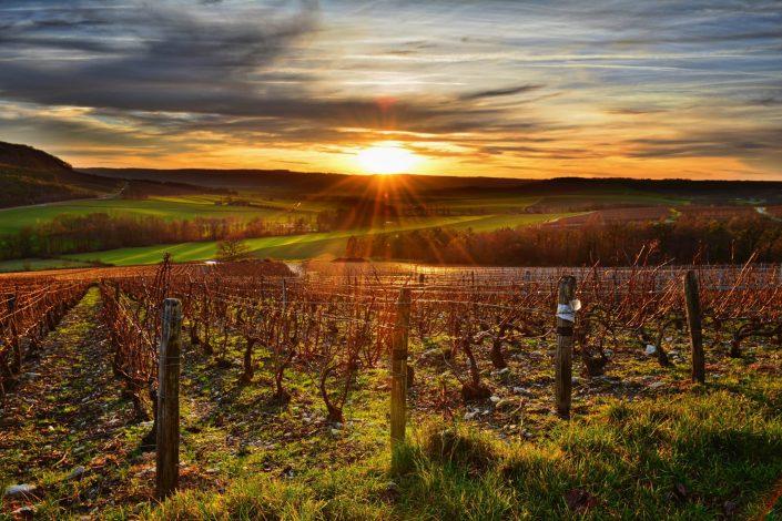 photographe aube paysages vigne champagne
